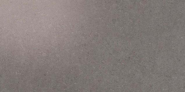 Kone Grey 300x600mm Polished Finish Floor Tile (1.26m2 box)