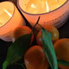 Cedar, Cloves & Ambergris Candle