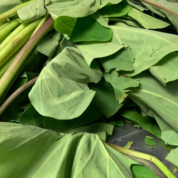 Patra leaves (Shammakura / Taro leaves)