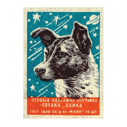 Laika, the Soviet space dog