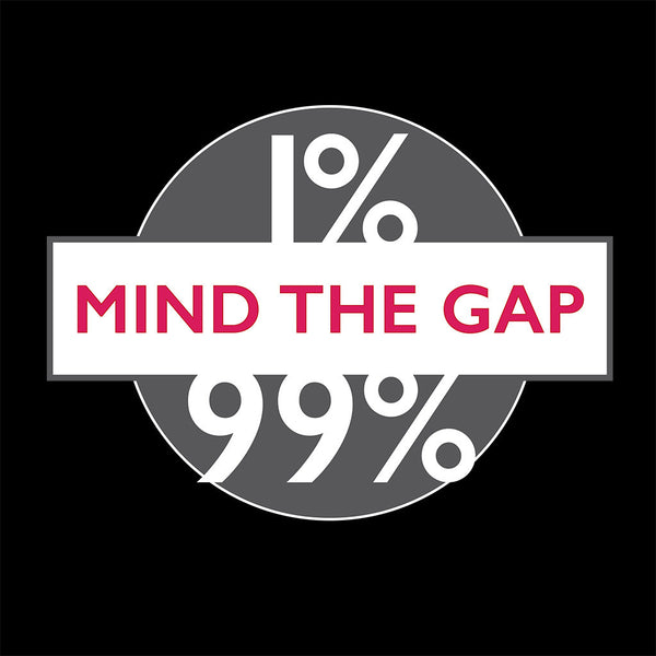 Mind the (income) Gap