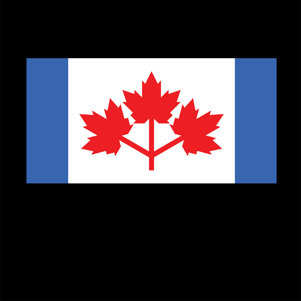 pearson u0027s pennant and the great canadian flag debate u2013 cryptic