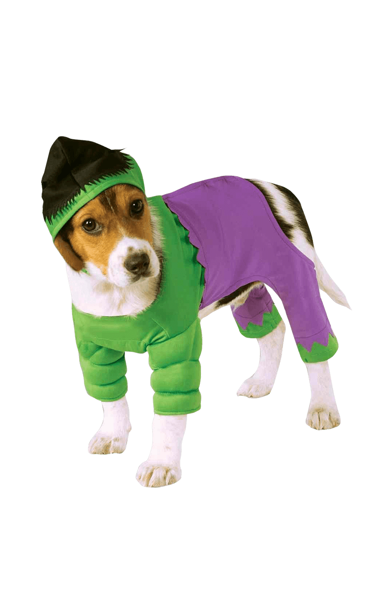 Incredible Hulk Dog Costume