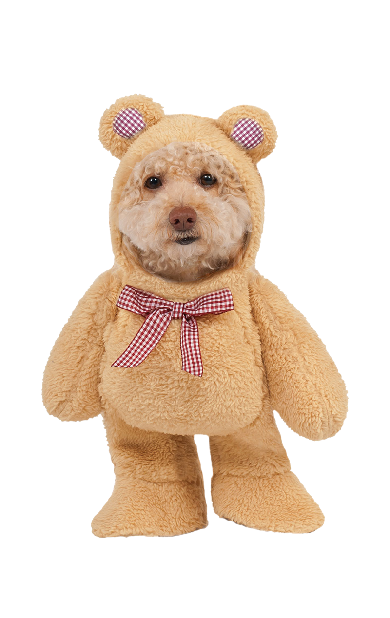 Walking Bear Dog Costume