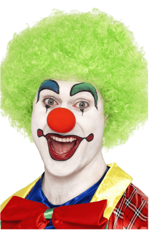 Green Clown Afro Wig