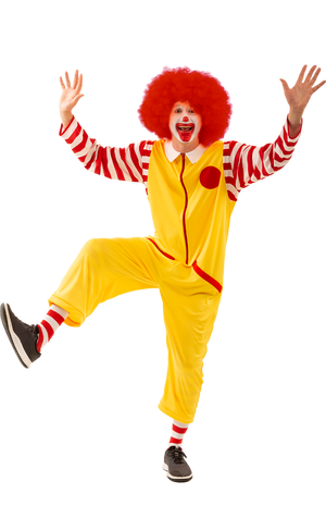 Ronald Clown Costume