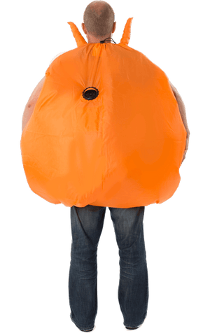 Inflatable Space Hopper Costume