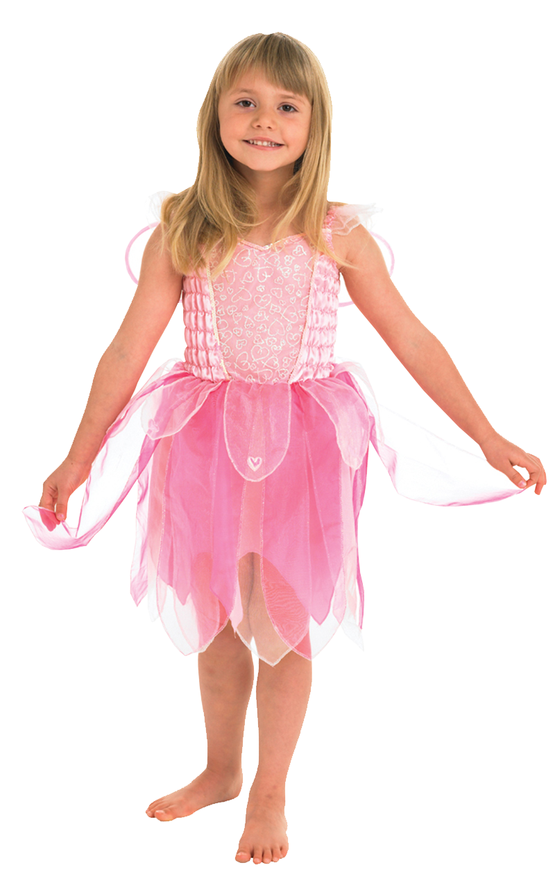 Sweetheart Fairy Costume