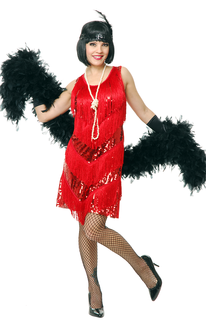 Jazzy Flapper Dress Costume