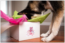 Load image into Gallery viewer, BrindleBerry Box - Premium Pup - Christmas