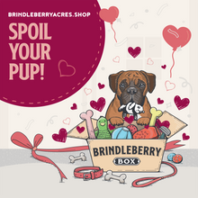 Load image into Gallery viewer, BrindleBerry Box - Premium Pup - Valentines