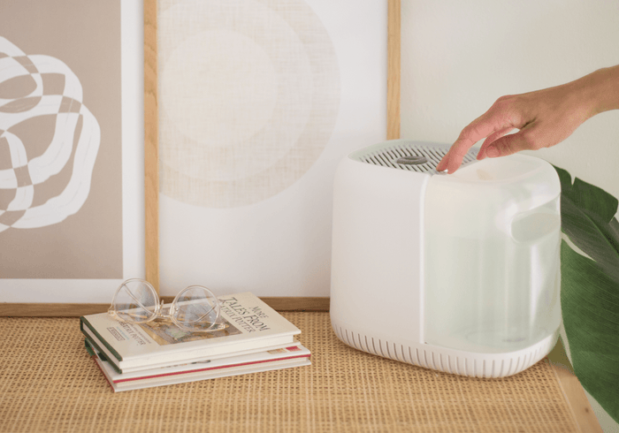 What Does a Humidifier Do?