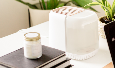 Canopy Humidifier on Work Station