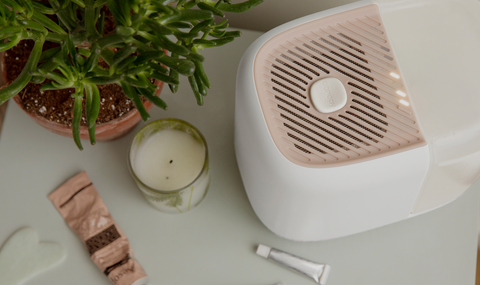 Canopy Humidifier and Essential Oil Pairing