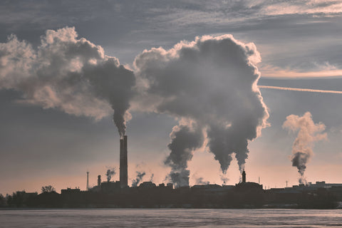 Bad air quality is hazardous for your health.