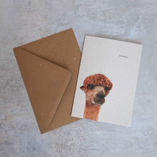 Load image into Gallery viewer, Hopefield Animal Card Bundle - The Bearded Gypsy Vintage Co.