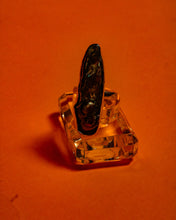 Load image into Gallery viewer, Orma Shell Ring - The Bearded Gypsy Vintage Co.