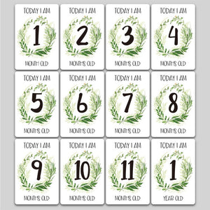 12 Month Stickers Baby Milestones - Various Types