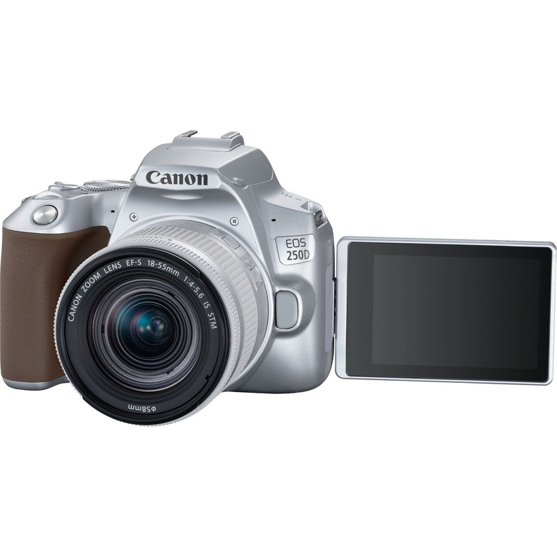 Canon EOS 250D Body w/ EF-S 18-55mm f/4-5.6 IS STM Lens (Rental)
