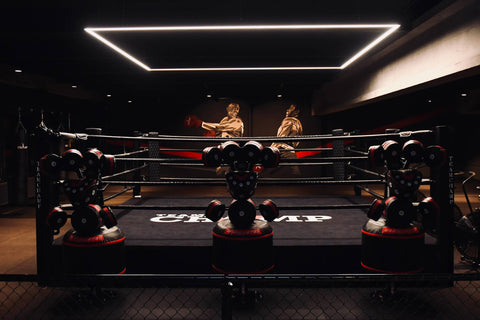 KuvaLight | Team Champ Kickboks ring lamp
