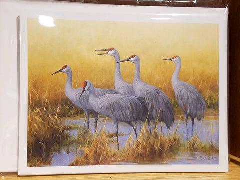 Sandhill Crane Note Cards by Gary Moss