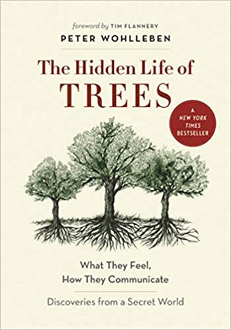 The Hidden Lives of Trees