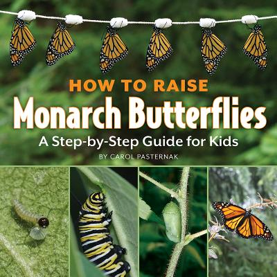How to Raise Monarch Butterflies: A Step-by-Step Guide for Kids