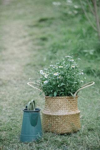 a Handmade woven basket on the grass supporting a full bouquet of flowers. The woven basket with Handles is standing next to a green watering can. the picture looks very artistic. Cerulien, Home decor to fall in love with. How to choose the perfect vase for your flower arrangement.