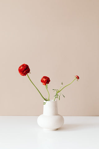 A white grain ceramic hourglass-shaped vase supporting red round flowers with green stems. The vase is sitting on a plain white and shiny surface with a beige toned wall. Cerulien Home decor, How to choose the perfect vase for your flower arrangements.