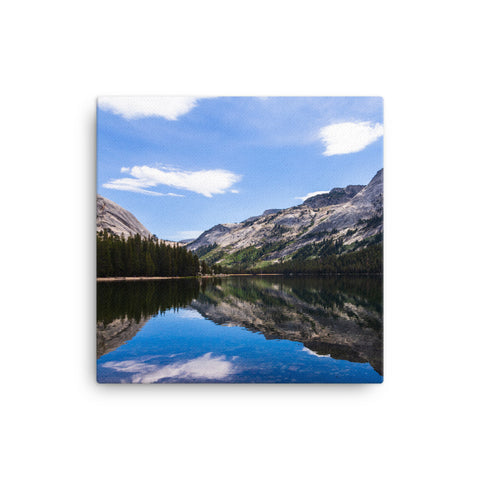 Yosemite landscape with reflections (1:1)
