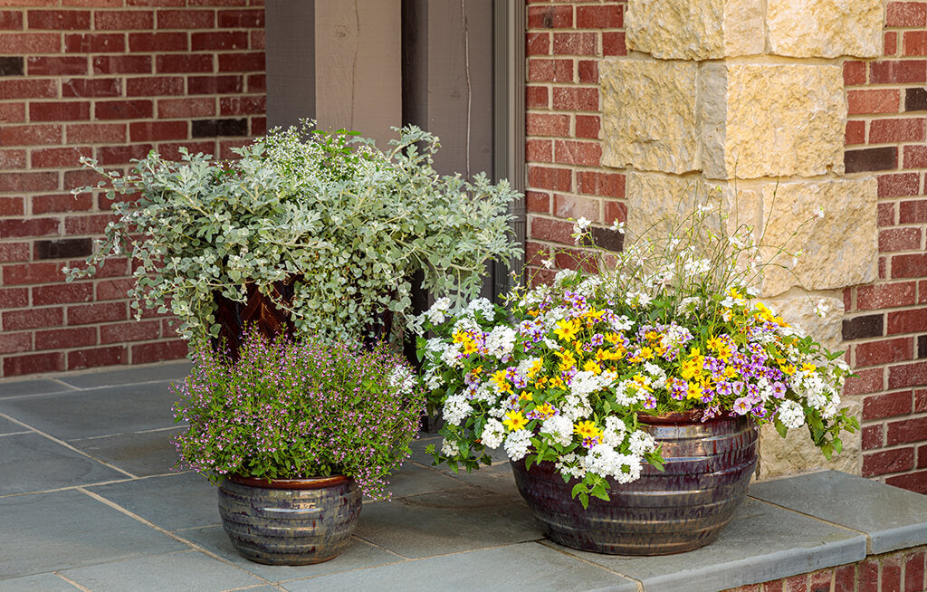 Five Spring Tips to Dress up your Doorway