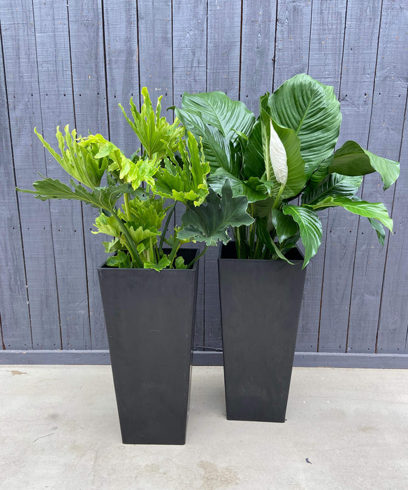 TALL BLACK PLANTER