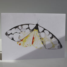 Load image into Gallery viewer, Butterflies of France Notecards by Heidy Sumei Chuang