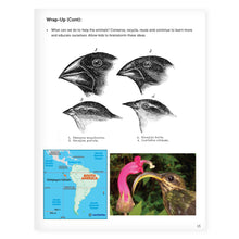 Load image into Gallery viewer, STEM Learning Activity Pack - Nature (Middle School)