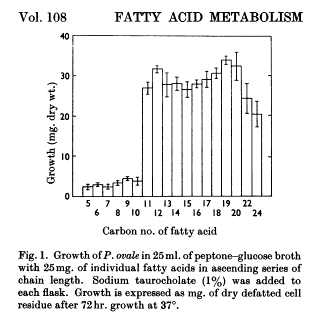 malassezia fatty acids