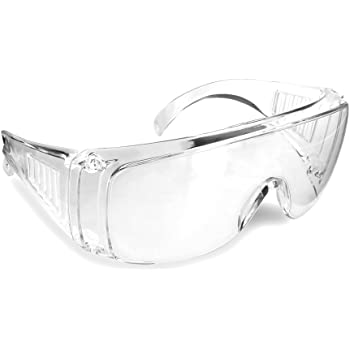 MSA PLANT VISITOR SAFETY GLASSES 10008174