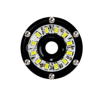 Cyclone LED - Single Light - Diffused Lens - 5W Flood Beam