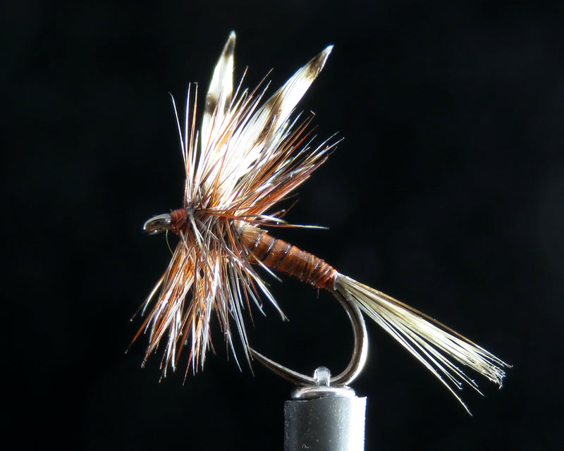 Adams Quill Ginger