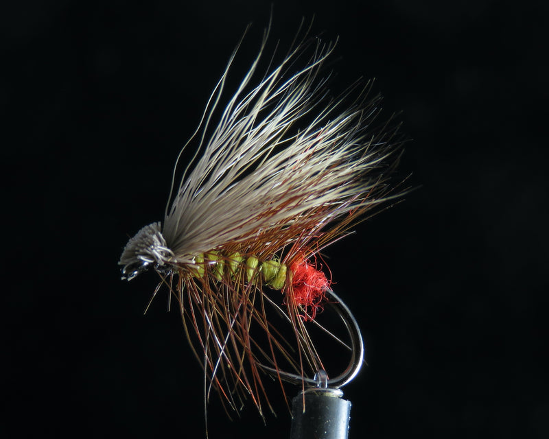Elk Yellow Sally