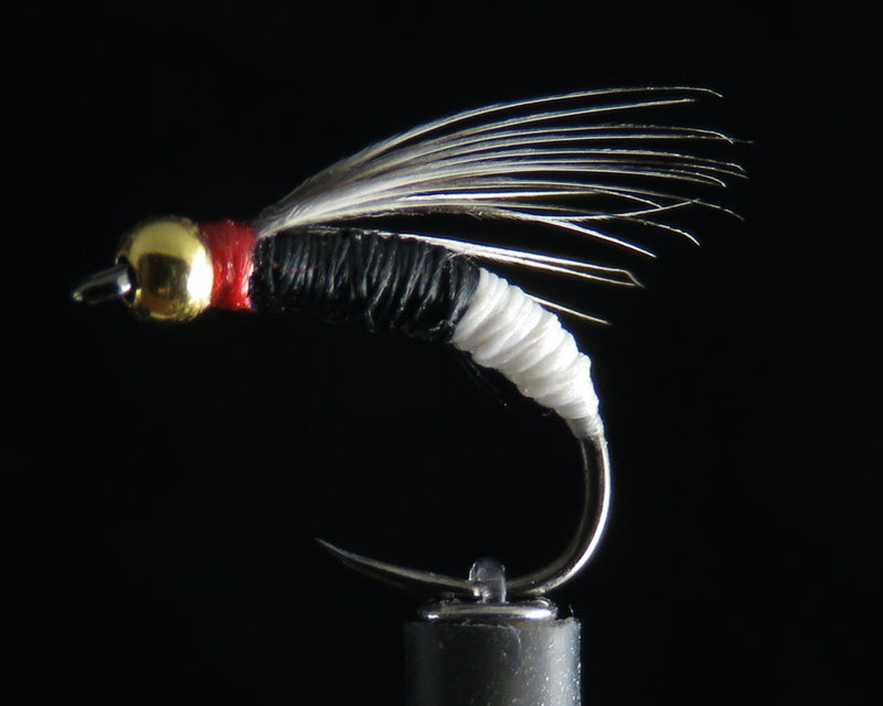 Standard Black & White Nymph