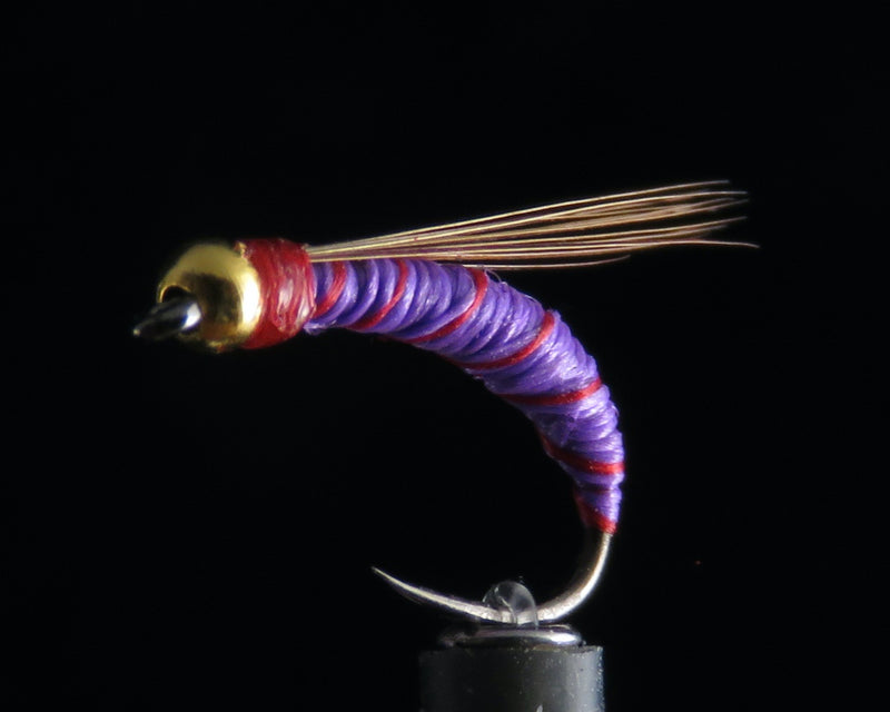 Standard Purple Nymph