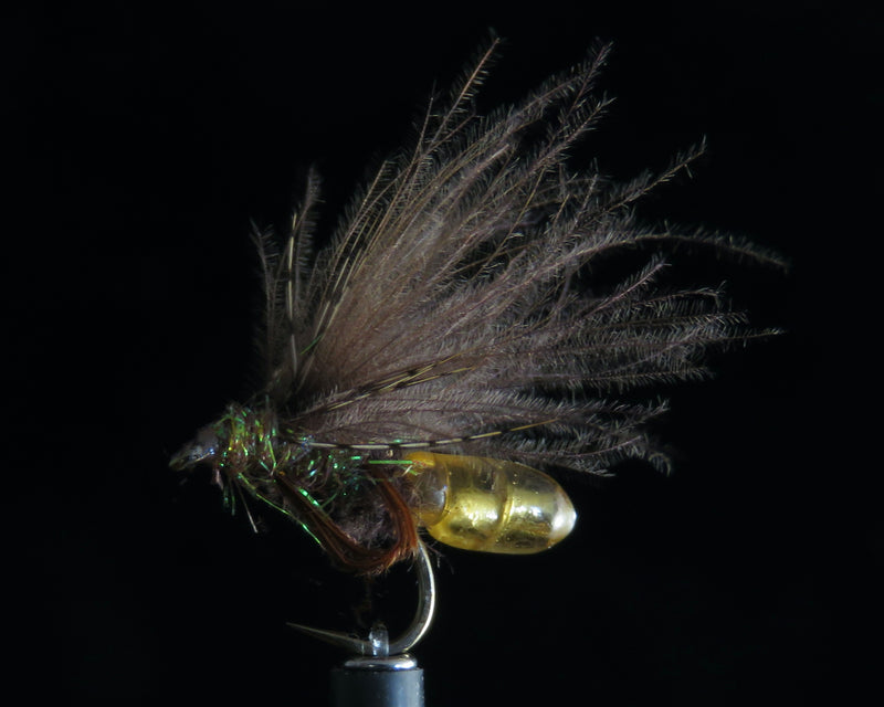 Radical Caddis