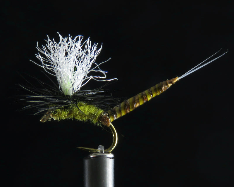 May Fly Ext. Quill Body olive