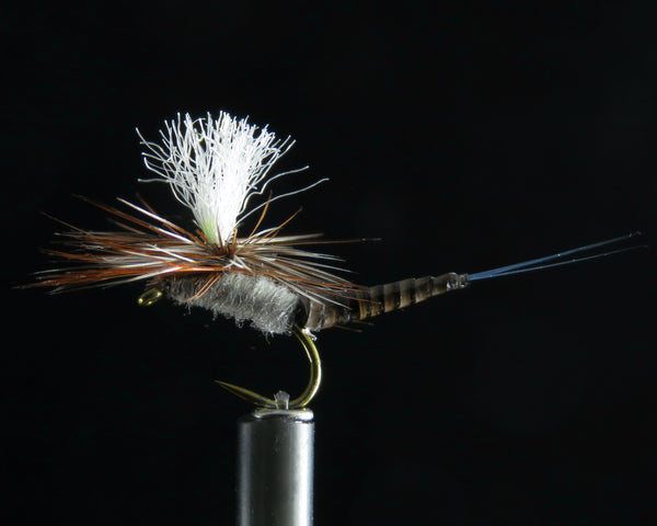 May Fly Ext. Quill Body blue dun