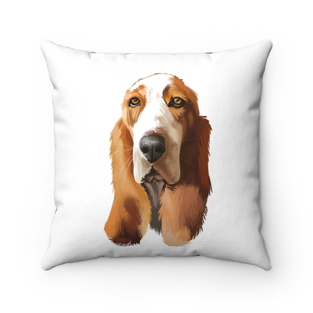Portrait of Basset Hound