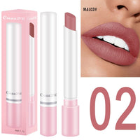 8 Colors Long Hot Waterproof Cosmetic Lasting No Fading Lipstick Makeup Lip Gloss Matte Velvet Fog Surface Nude Lipstick TSLM1
