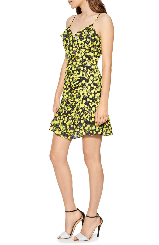 Parker Erica Ruffled Lemon-Print Dress