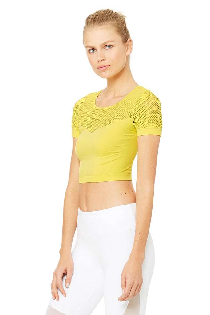 Alo Yoga Mesh Crop