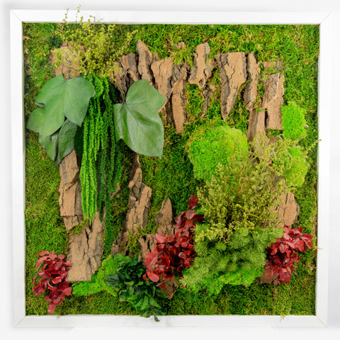 Green Wall with Frame 4