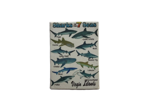 Shark of 7 Seas Magnet